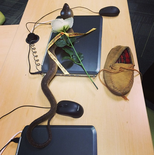 the toy snake given to Gormley and the shoe/moccassin thrown at him